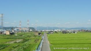 Shinkansen View